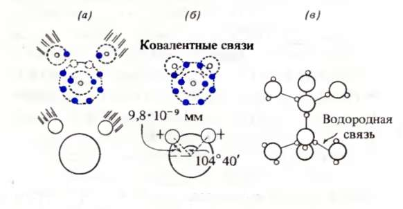 Структура молекул воды, а, б-образование полярной молекулы воды посредством ковалентных связей; e-молекулы воды...